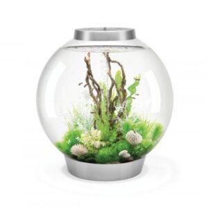 biOrb Classic Mcr Silver 30 Litre Aquarium is a complete all-in-one acrylic fish tank setup