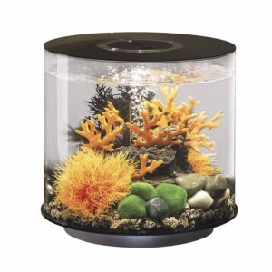 biOrb Tube 30L Black Aquarium is a complete all-in-one package that features everything you require to get setup quickly and easily.